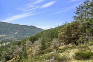 Photo 14: Lot A Armand Way in : GI Salt Spring Land for sale (Gulf Islands)  : MLS®# 871175