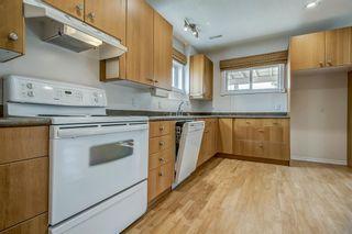 Photo 38: 50 Citadel Circle NW in Calgary: Citadel Detached for sale : MLS®# A1134557