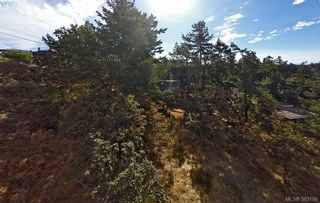 Photo 4: 4732 Treetop Hts in VICTORIA: SE Cordova Bay Land for sale (Saanich East)  : MLS®# 770118