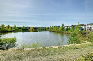 Photo 31: 115 Everhollow Street SW in Calgary: Evergreen Detached for sale : MLS®# A1145858