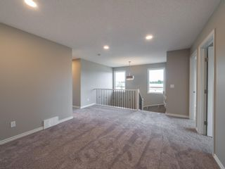 Photo 15: 2619 200 Street in Edmonton: Zone 57 House for sale : MLS®# E4252243