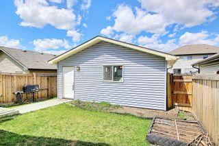 Photo 40: 2918 21A Avenue in Edmonton: Zone 30 House for sale : MLS®# E4247386