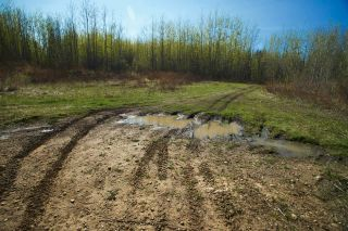 Photo 35: RR 21 TWP 565A Lake Nakamun: Rural Lac Ste. Anne County Rural Land/Vacant Lot for sale : MLS®# E4246330