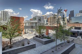 Photo 28: 303 211 13 Avenue SE in Calgary: Beltline Apartment for sale : MLS®# A1108216