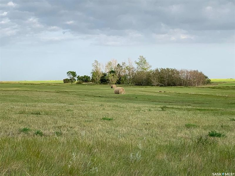 FEATURED LISTING: 36.43 ACRES - FINDLATER Findlater