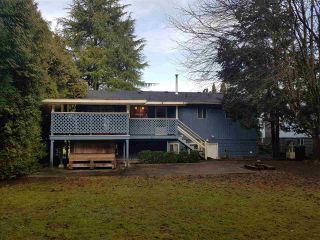 Photo 16: 21684 HOWISON Avenue in Maple Ridge: West Central House for sale : MLS®# R2233098