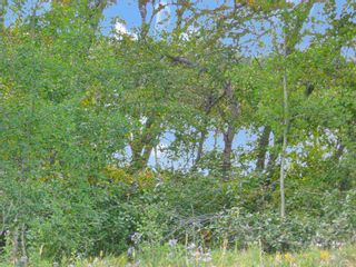 Photo 4: 24180 Meadow Drive in Rural Rocky View County: Rural Rocky View MD Residential Land for sale : MLS®# A1098296