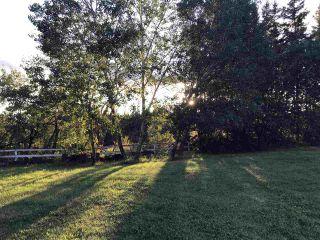 Photo 35: 51121 Range Road 270: Rural Parkland County House for sale : MLS®# E4248084