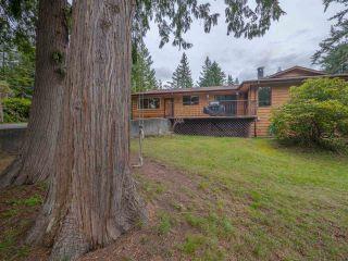 Photo 19: 8056 COOPER Road in Halfmoon Bay: Halfmn Bay Secret Cv Redroofs House for sale (Sunshine Coast)  : MLS®# R2254161