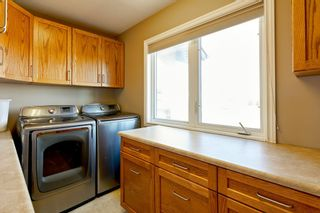 Photo 24: 54511 RGE RD 260: Rural Sturgeon County House for sale : MLS®# E4241905