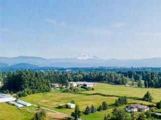 Photo 20: 5571 ROSS Road: Agri-Business for sale in Abbotsford: MLS®# C8036359