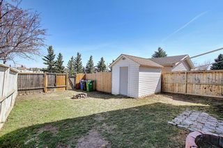 Photo 47: 66 Erin Green Way SE in Calgary: Erin Woods Detached for sale : MLS®# A1094602