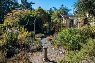Photo 26: 951 Jasmine Ave in Saanich: SW Marigold House for sale (Saanich West)  : MLS®# 886878