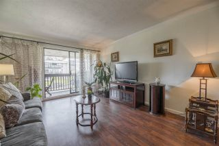 """Photo 7: 210 1040 FOURTH Avenue in New Westminster: Uptown NW Condo for sale in """"HILLSIDE TERRACE"""" : MLS®# R2557518"""