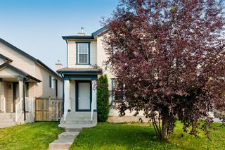 Photo 26: 371 Copperfield Heights SE in Calgary: Copperfield Detached for sale : MLS®# A1131781
