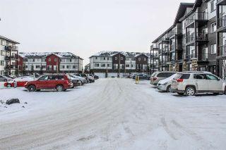 Photo 5: 306 3353 16A Avenue in Edmonton: Zone 30 Condo for sale : MLS®# E4230704