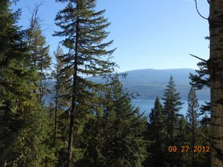 Photo 11: 3030 Vickers Trail in Anglemont: North Shuswap House for sale (Shuswap)  : MLS®# 10054853