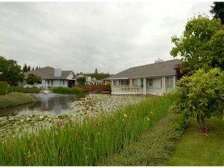 """Photo 18: # 80 5550 LANGLEY BYPASS RD in Langley: Langley City Townhouse for sale in """"Riverwynde"""" : MLS®# F1314556"""