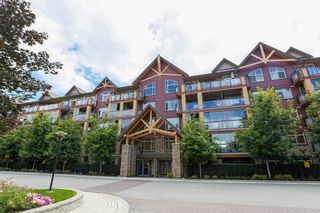 """Photo 1: 226 8288 207A Street in Langley: Willoughby Heights Condo for sale in """"YORKSON CREEK"""" : MLS®# R2096294"""