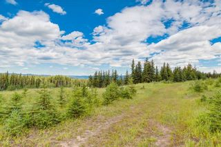 Photo 4: Steven Hill - Luxury Calgary Real Estate - Sotheby's Calgary - Sells Ghost Lake property!