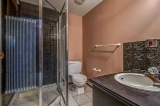Photo 21: 4 Abergale Way NE in Calgary: Abbeydale Detached for sale : MLS®# A1068236