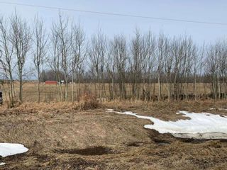 Photo 1: TWP Road 515 Range Road 220: Rural Strathcona County Rural Land/Vacant Lot for sale : MLS®# E4236521