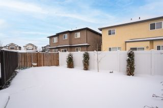 Photo 47: 808 ALBANY Cove in Edmonton: Zone 27 House for sale : MLS®# E4227367
