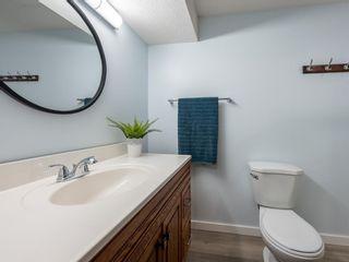 Photo 33: 107 Hawktree Bay NW in Calgary: Hawkwood Detached for sale : MLS®# A1113635
