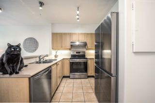 """Photo 12: 322 3629 DEERCREST Drive in North Vancouver: Roche Point Condo for sale in """"Deerfield By the Sea"""" : MLS®# R2619848"""