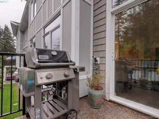 Photo 19: 203 591 Latoria Rd in VICTORIA: Co Olympic View Condo for sale (Colwood)  : MLS®# 799077