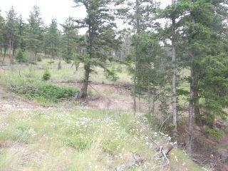 Photo 6: 6520 OLD HIGHWAY 5 in : Heffley Lots/Acreage for sale (Kamloops)  : MLS®# 135004