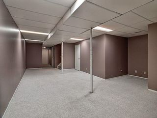Photo 23: 5317 39 Avenue in Edmonton: Zone 29 House Half Duplex for sale : MLS®# E4254636