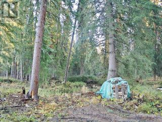 Photo 11: 53018 RANGE RD 175 in Rural Yellowhead County: Vacant Land for sale : MLS®# AW38443
