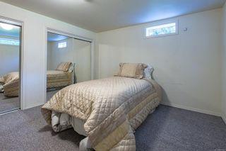 Photo 42: 4241 Buddington Rd in : CV Courtenay South House for sale (Comox Valley)  : MLS®# 857163