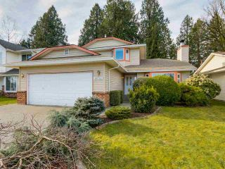 Photo 1: 19566 PARK ROAD in Pitt Meadows: Mid Meadows House for sale : MLS®# R2047749