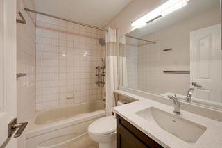 Photo 31: 227 FERGUSON Place in Edmonton: Zone 14 House for sale : MLS®# E4256988