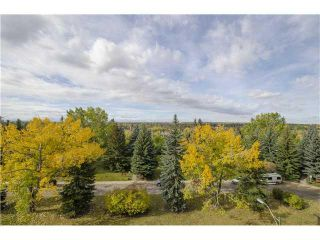 Photo 9: 701/02 3232 RIDEAU Place SW in Calgary: Rideau Park Condo for sale : MLS®# C3649551