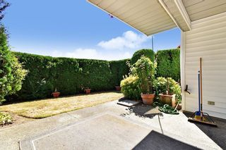"""Photo 25: 13 3055 TRAFALGAR Street in Abbotsford: Central Abbotsford Townhouse for sale in """"GLENVIEW MEADOWS"""" : MLS®# R2608637"""
