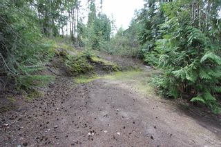 Photo 11: 2388 Waverly Drive: Blind Bay Vacant Land for sale (South Shuswap)  : MLS®# 10201100