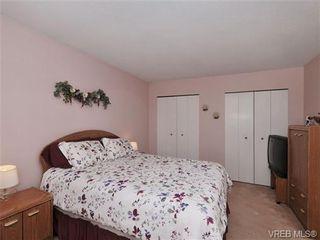 Photo 12: 5 3993 Columbine Way in VICTORIA: SW Tillicum Row/Townhouse for sale (Saanich West)  : MLS®# 696944