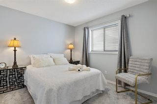Photo 29: 215 COPPERFIELD Manor SE in Calgary: Copperfield Detached for sale : MLS®# C4288543