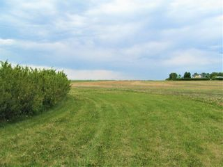 Photo 7: 251003 Rge Rd 281 in Rural Rocky View County: Rural Rocky View MD Detached for sale : MLS®# A1062689