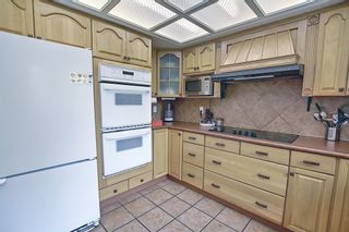 Photo 15: 19 Whitefield Place NE in Calgary: Whitehorn Detached for sale : MLS®# A1133052