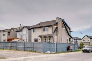 Photo 48: 1571 COPPERFIELD Boulevard SE in Calgary: Copperfield Detached for sale : MLS®# A1107569