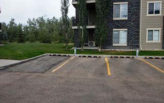 Photo 37: 215 1060 McConachie Boulevard in Edmonton: Zone 03 Condo for sale : MLS®# E4257715