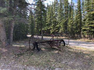 Photo 12: 11 Arowen Campground: Rural Mountain View County Residential Land for sale : MLS®# A1080777