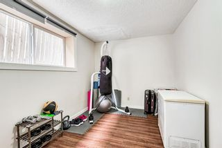 Photo 22: 114 Dovertree Place SE in Calgary: Dover Semi Detached for sale : MLS®# A1071722