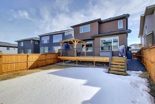 Photo 50: 210 Evansglen Drive NW in Calgary: Evanston Detached for sale : MLS®# A1080625