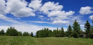 Photo 4: 5.78 Acres Parkins Road: Rural Foothills County Land for sale : MLS®# A1086953