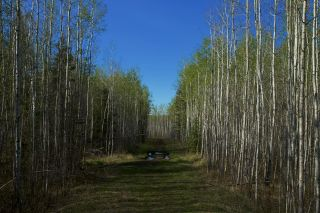Photo 48: RR 21 TWP 565A Lake Nakamun: Rural Lac Ste. Anne County Rural Land/Vacant Lot for sale : MLS®# E4246330